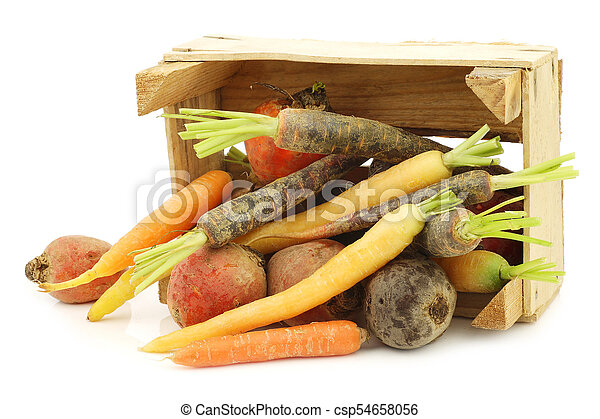 assorted root vegetables in a wooden crate - csp54658056