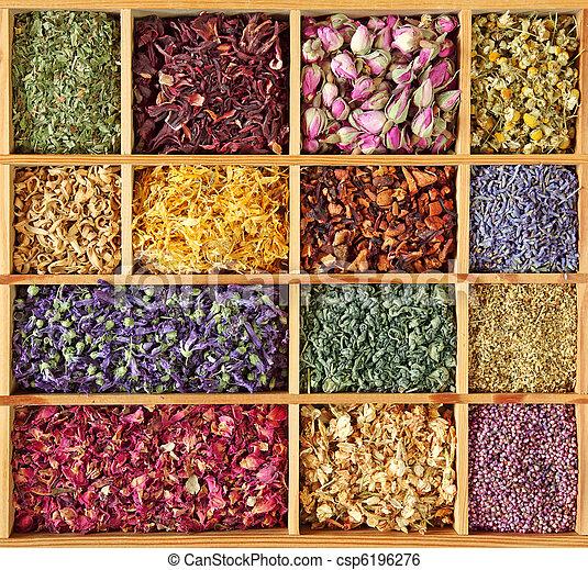 Assortment of dried tea - csp6196276