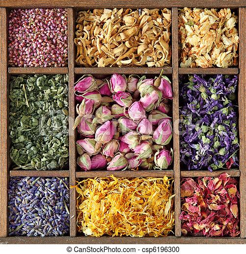 Assortment of dried tea - csp6196300
