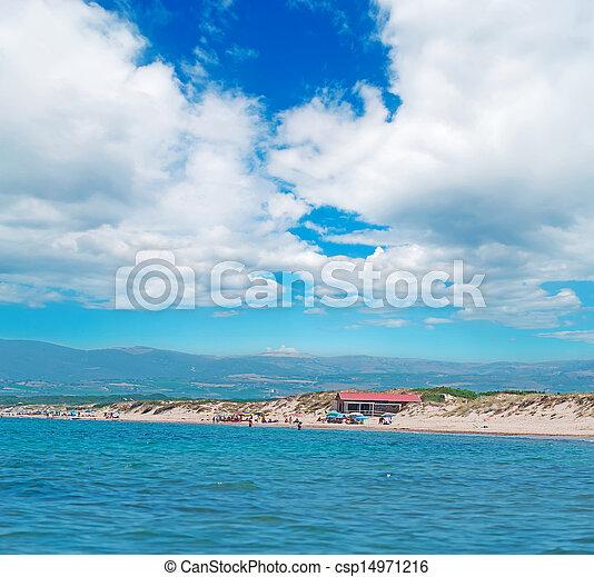 at the beach - csp14971216