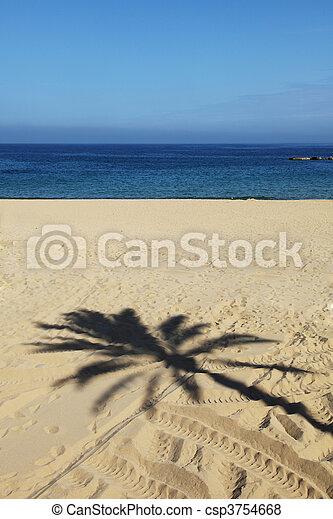 at the beach - csp3754668
