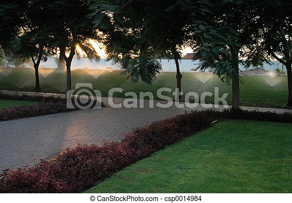 At the park - csp0014984