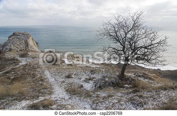 At the sea shore - csp2206769