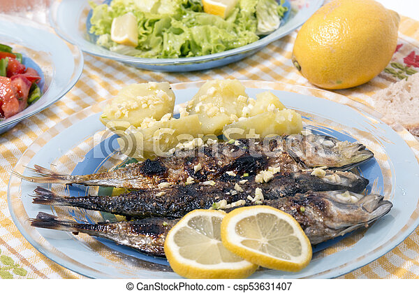 Atlantic horse mackerel meal - csp53631407