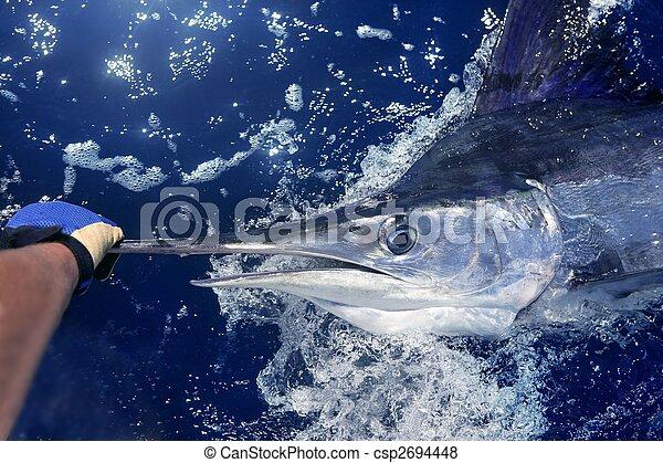 Atlantic white marlin big game sport fishing - csp2694448