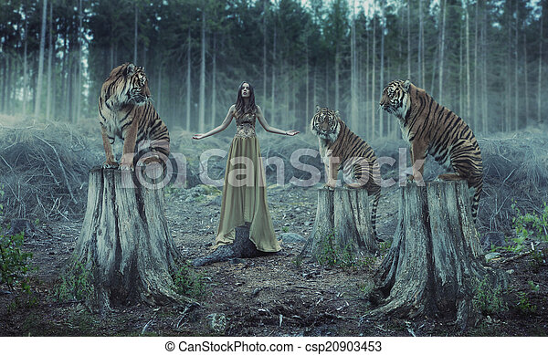 Attractive female trainer with the tigers - csp20903453