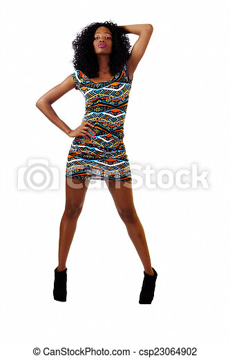 Attractive Skinny African American  Woman Dress - csp23064902