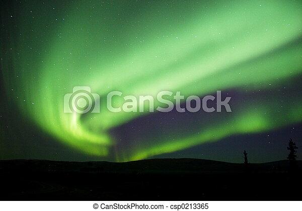 Aurora Borealis near - csp0213365
