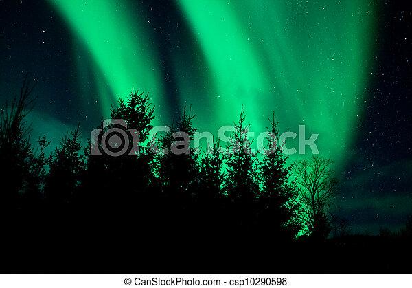Aurora Borealis (Northern lights) - csp10290598