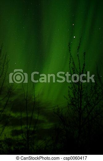 Aurora Borealis - csp0060417