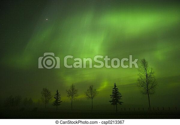 Aurora Borealis - csp0213367