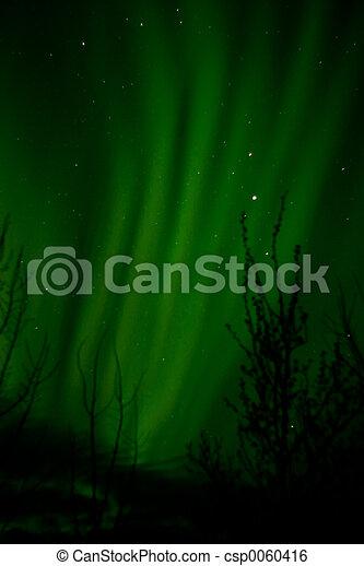 Aurora Borealis - csp0060416