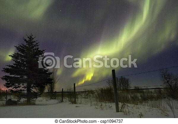Aurora - csp1094737
