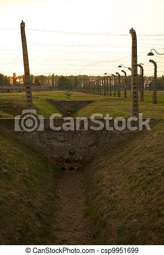 Auschwitz-Birkenau Concentration Camp - csp9951699