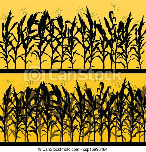 ausführlich, landschaft, getreide, abbildung, feld, vektor, hintergrund, landschaftsbild - csp16998464