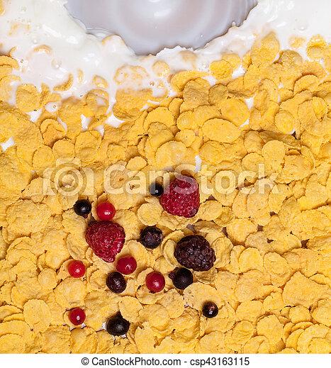auslaufende milch, kornflakes, ansicht - csp43163115