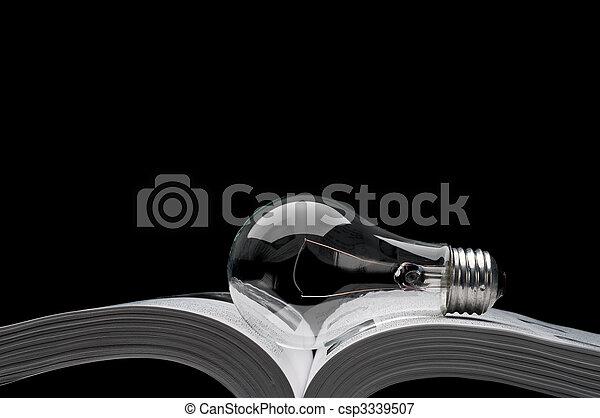 Ein Glühbirnen auf einem Buch, das Ideen von Inspiration und Bildung zeigt - csp3339507