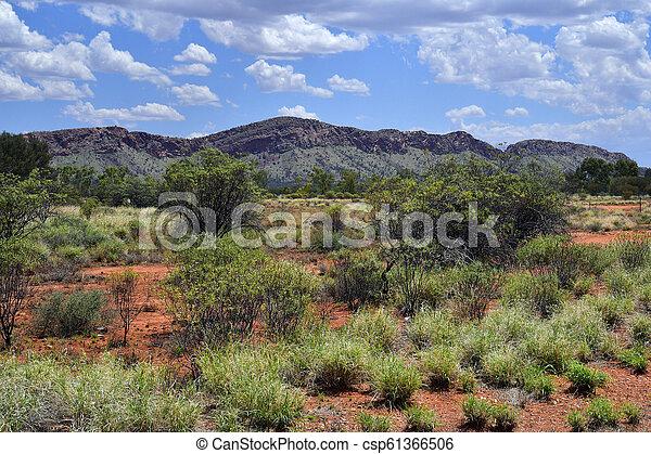 australia, federn, nt, alice - csp61366506