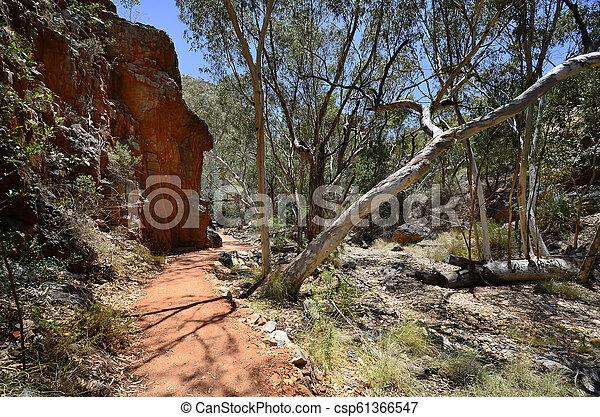 australia, gebiet, bereich, nördlich , mcdonnell - csp61366547