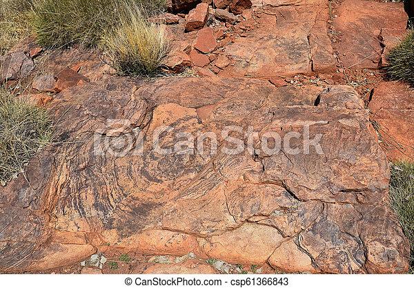australia, gebiet, bereich, nördlich , mcdonnell - csp61366843