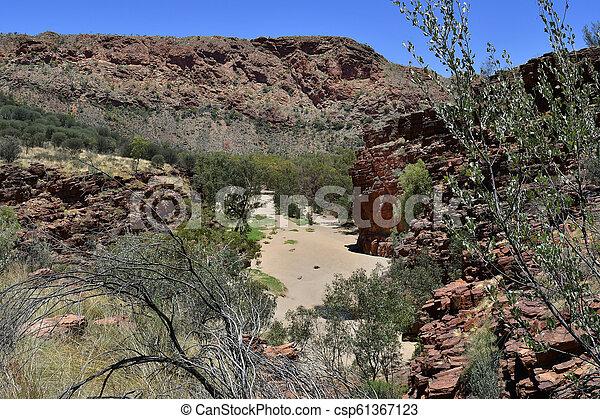 australia, gebiet, bereich, nördlich , mcdonnell - csp61367123