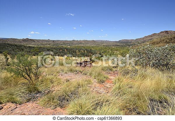 australia, gebiet, bereich, nördlich , mcdonnell - csp61366893