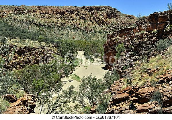 australia, gebiet, bereich, nördlich , mcdonnell - csp61367104