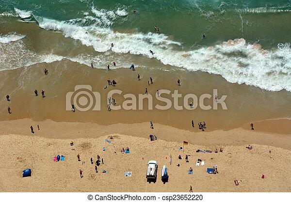 australia, -queensland, paradiso surfisti, principale, spiaggia - csp23652220