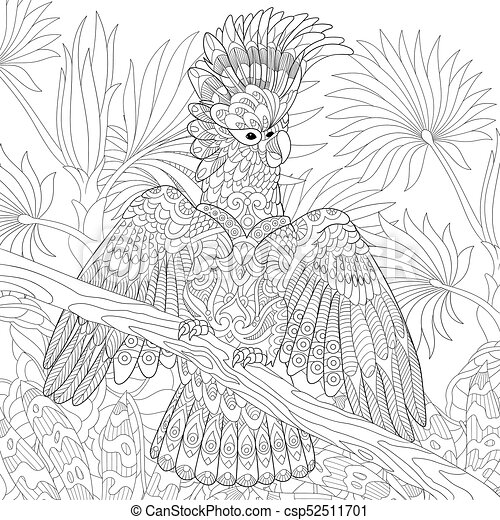 Australian Cockatoo Parrot Coloring Page Of Australian Cockatoo