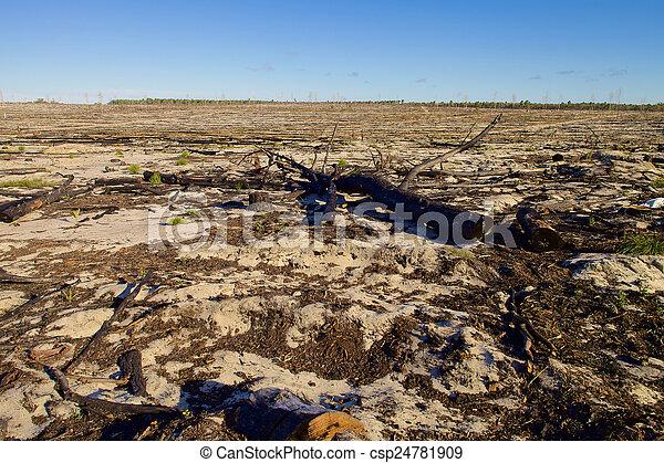 Australian landscape in sunny day - csp24781909