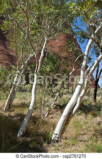 Australian Outback, Northern Territory, Australia - csp2761270