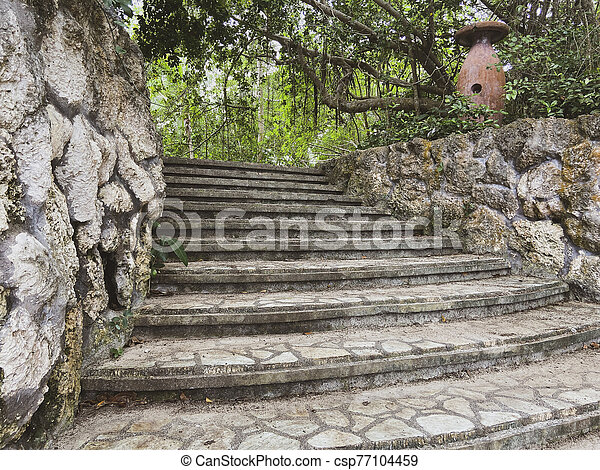 Authentic staircase in the jungle. Steps leading to a tropical park. Masonry stone. Old jug among the trees. Close-up. - csp77104459