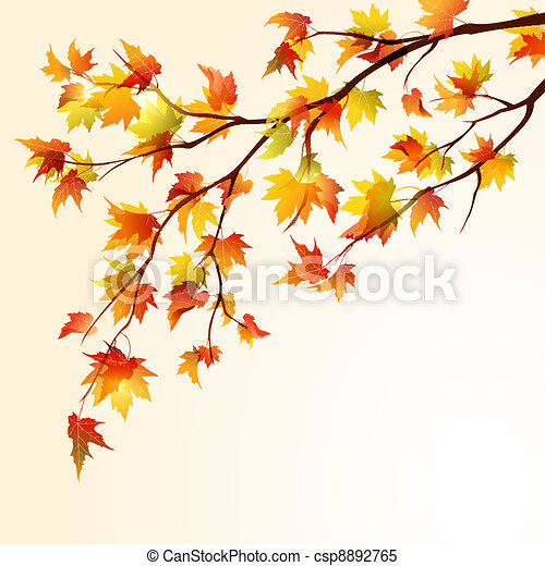automne, érable, branche - csp8892765