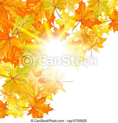 automne, érable - csp10765625
