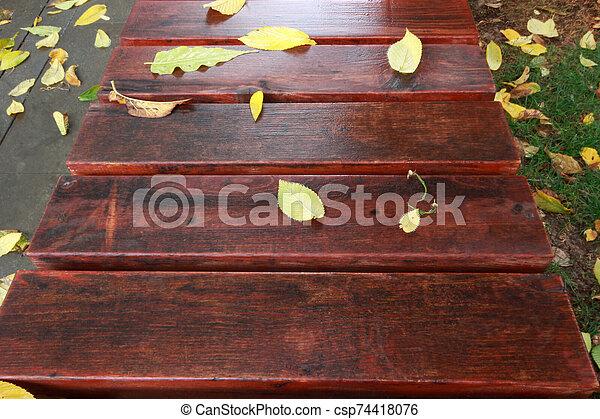 automne, banc bois, feuilles - csp74418076