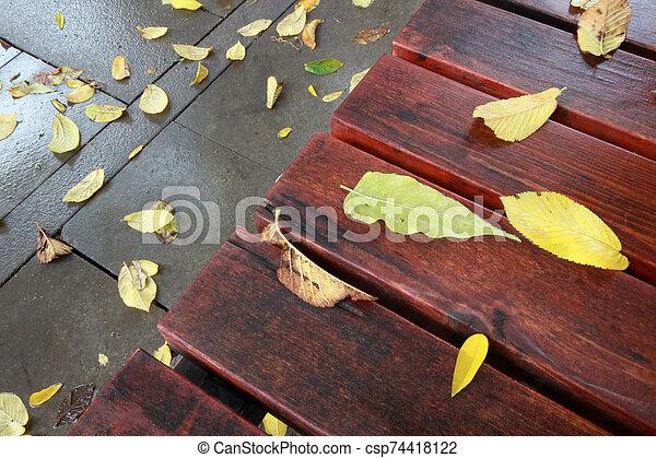 automne, banc bois, feuilles - csp74418122