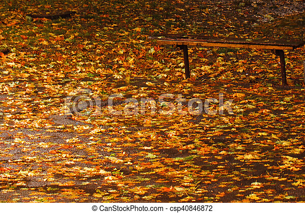 automne, bancs parc - csp40846872