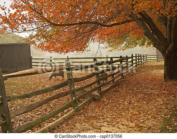 automne, basse-cour - csp0137056