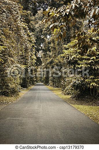 automne, chemin - csp13179370