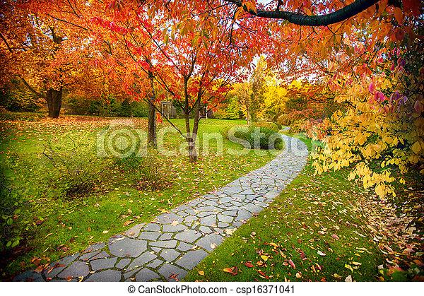 automne, chemin - csp16371041