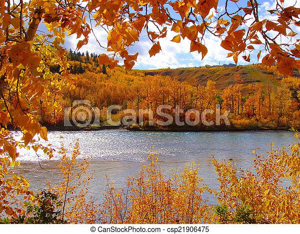 automne, couleurs - csp21906475