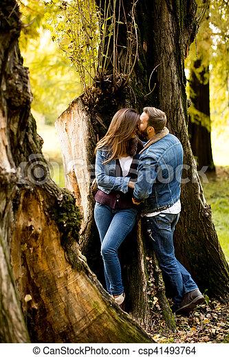 automne, couple, parc, aimer - csp41493764