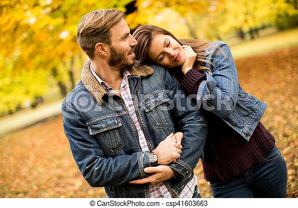 automne, couple, parc, aimer - csp41603663