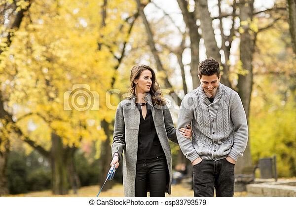automne, couple, parc, aimer - csp33793579
