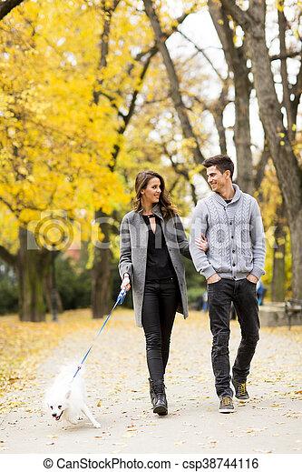 automne, couple, parc, aimer - csp38744116