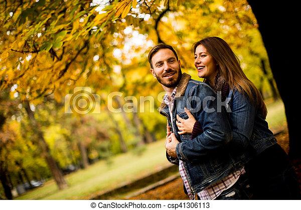 automne, couple, parc, aimer - csp41306113