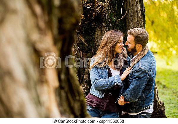 automne, couple, parc, aimer - csp41560058
