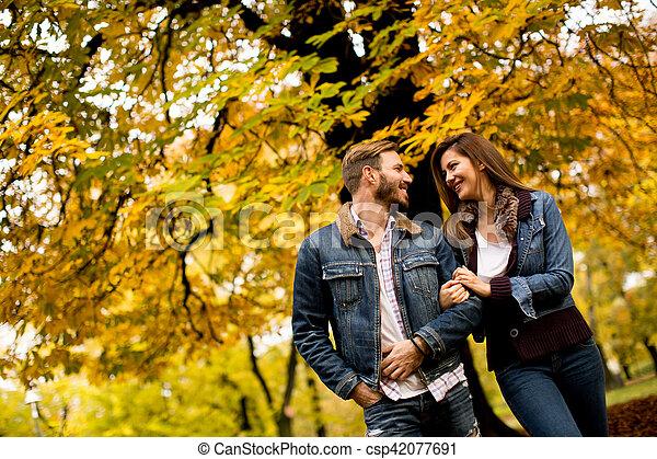 automne, couple, parc, aimer - csp42077691
