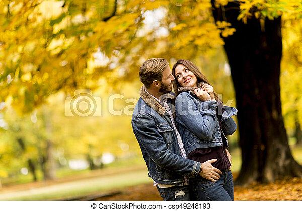 automne, couple, parc, jeune, aimer - csp49248193