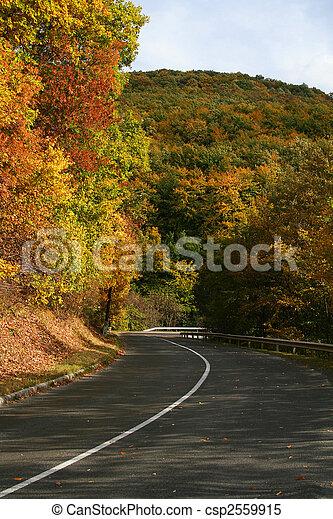 automne - csp2559915